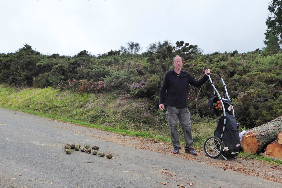 8 Camino Routes with a Walking Trailer-image