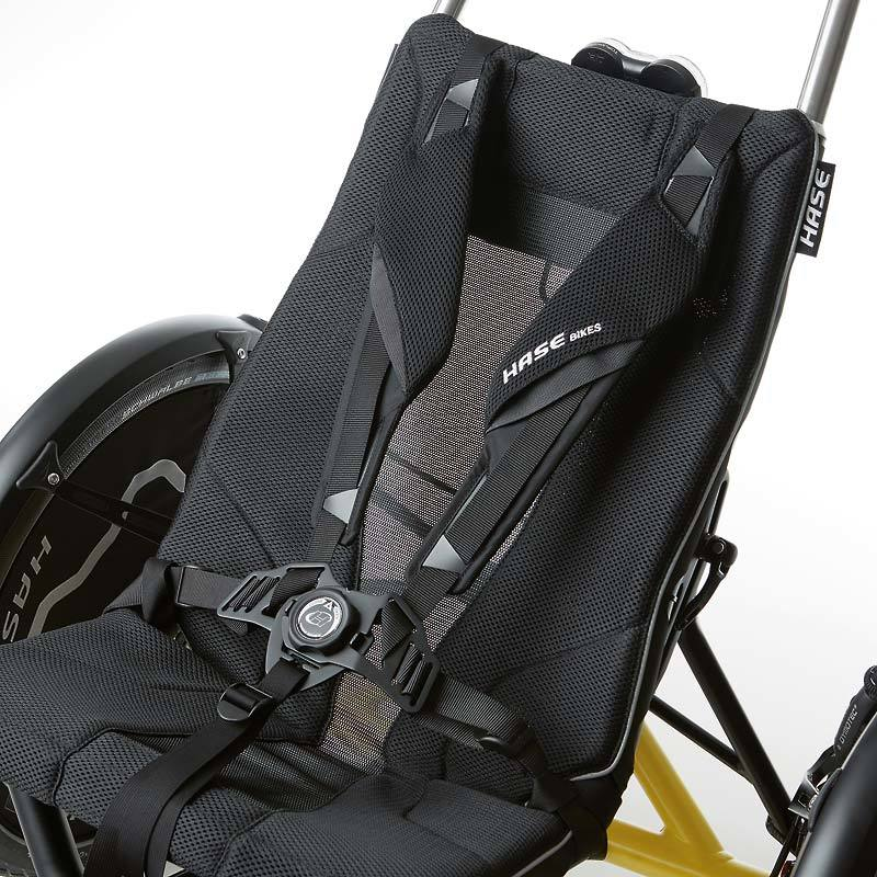 Hase Seat Harness